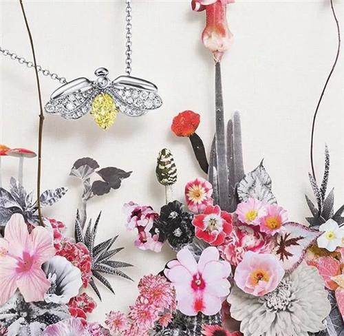 T家新出的Paper Flowers系列到底值不值得入手?
