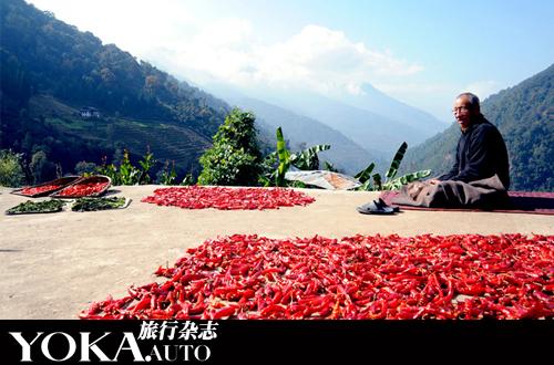 不丹的大多数饭店都提供标准的中国菜或印度菜