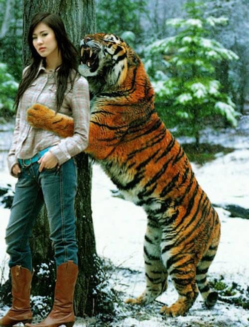 美女与动物亲密接触 上演真人版美女与野兽 性